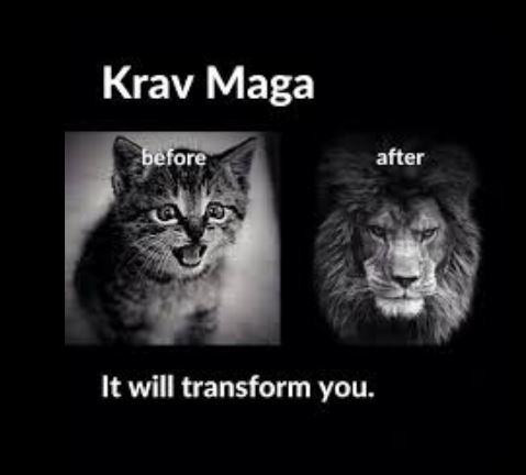 Krav Maga works